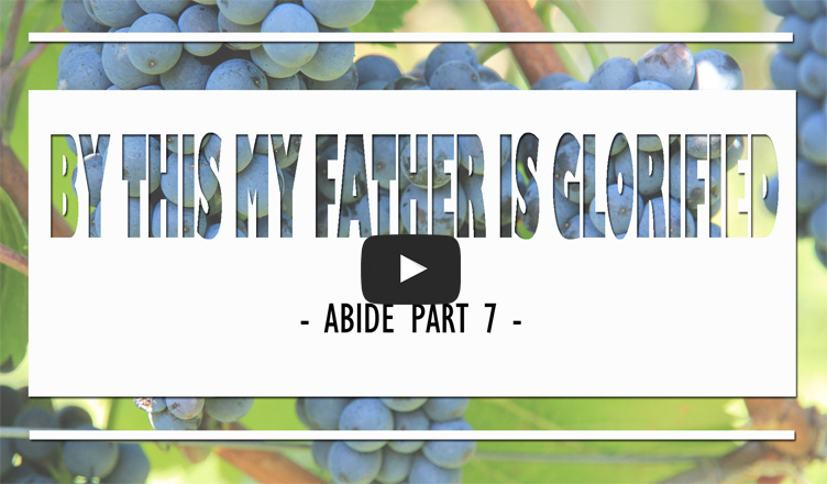 Abide-Part7-Father-Is-Glorified