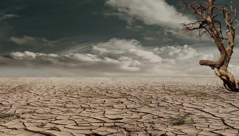 dry-pic